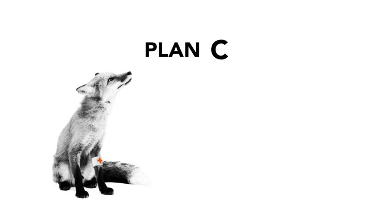 Dit was Plan C: een avond vol muziek, woord en gezelligheid