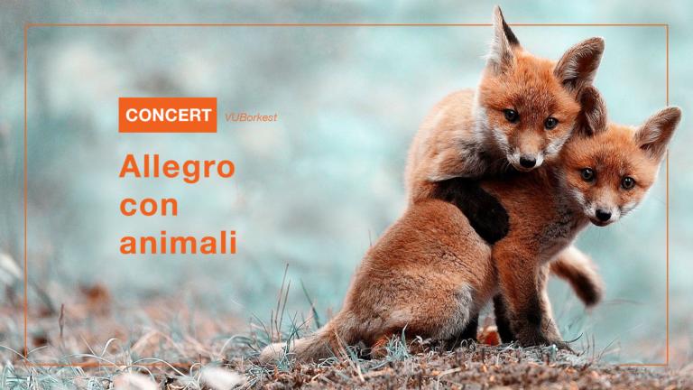 Concert: Allegro con animali van VUBorkest