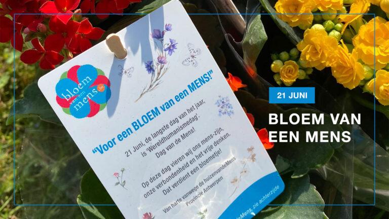 Bloemetjesactie in Antwerpen